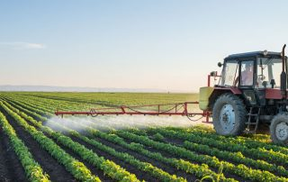Pesticides Testing in Food Products